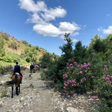 Mysterious Sicily - two day trail